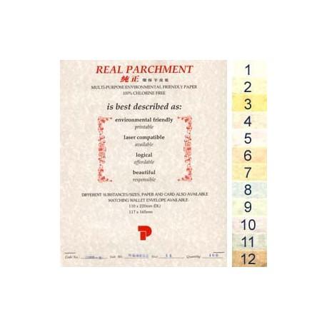 Real 100-2 Parchment Paper A4 100gsm 100Sheets Vellum