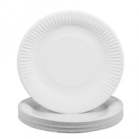 "Paper Plate 7"" 100's White"