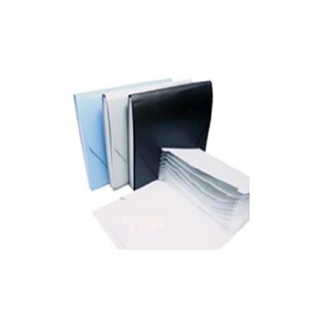 Database Plastic Expandable Wallet F4 12 Tabs Blue