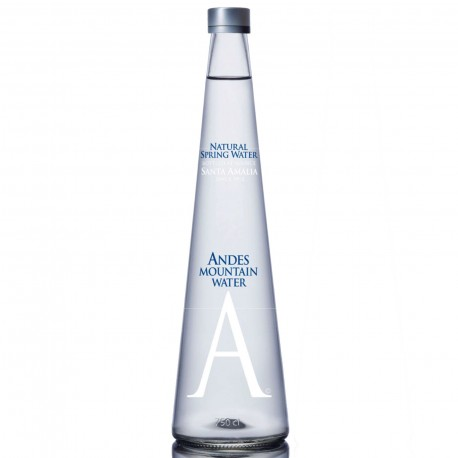 Andes Mountain Still Water 750ml 13Bottles