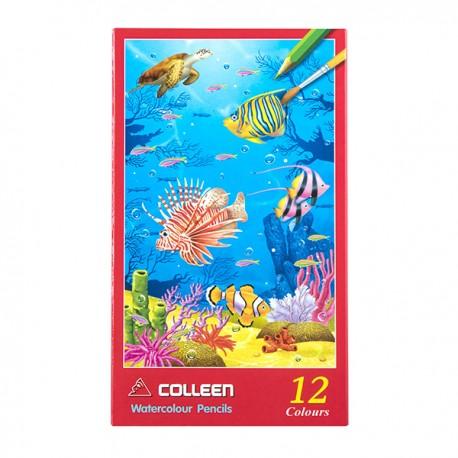 Colleen 水溶性木顏色 色芯直徑3.8毫米 特粗筆芯 12色